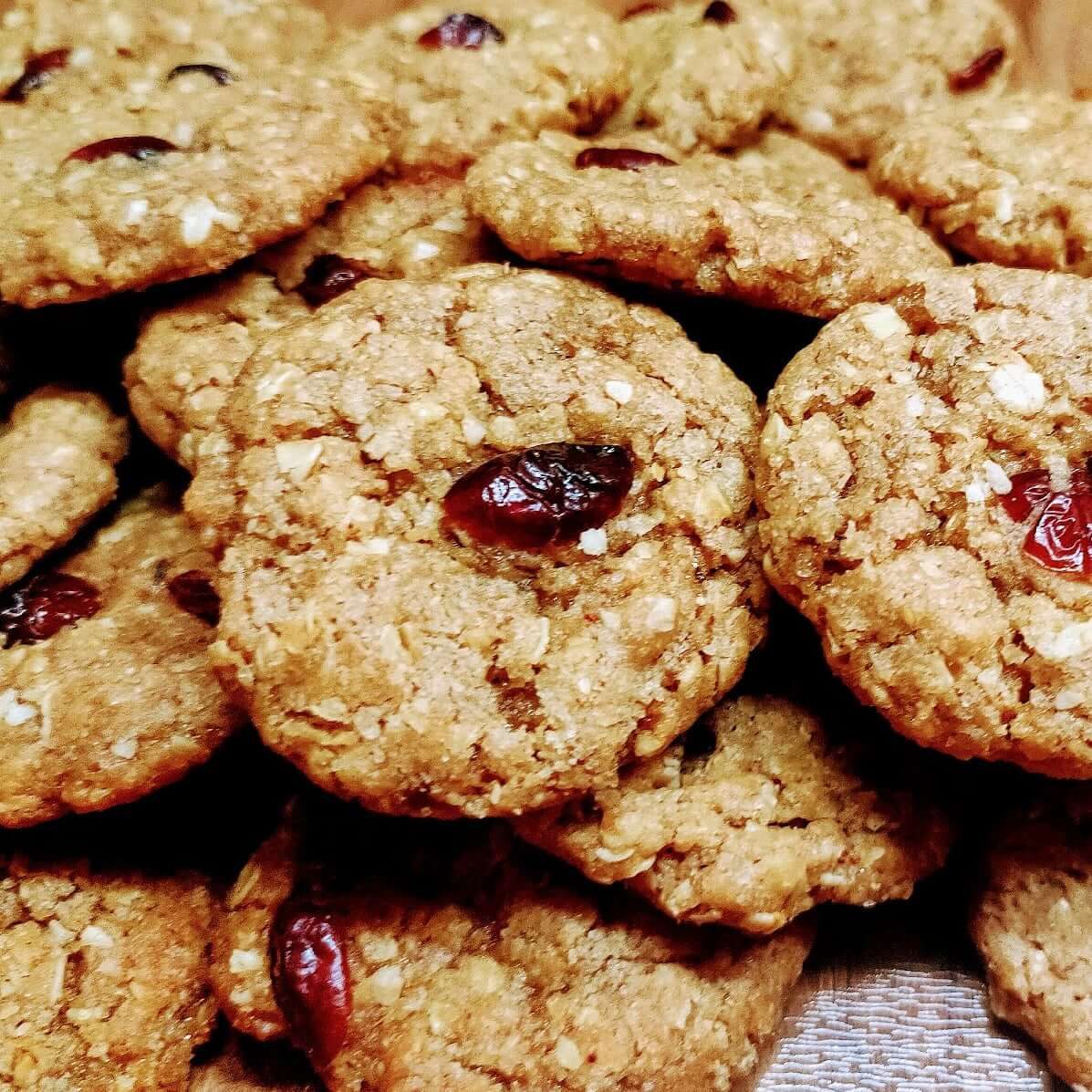 Oats n Cranberry Cookies Designs, Images, Price Near Me