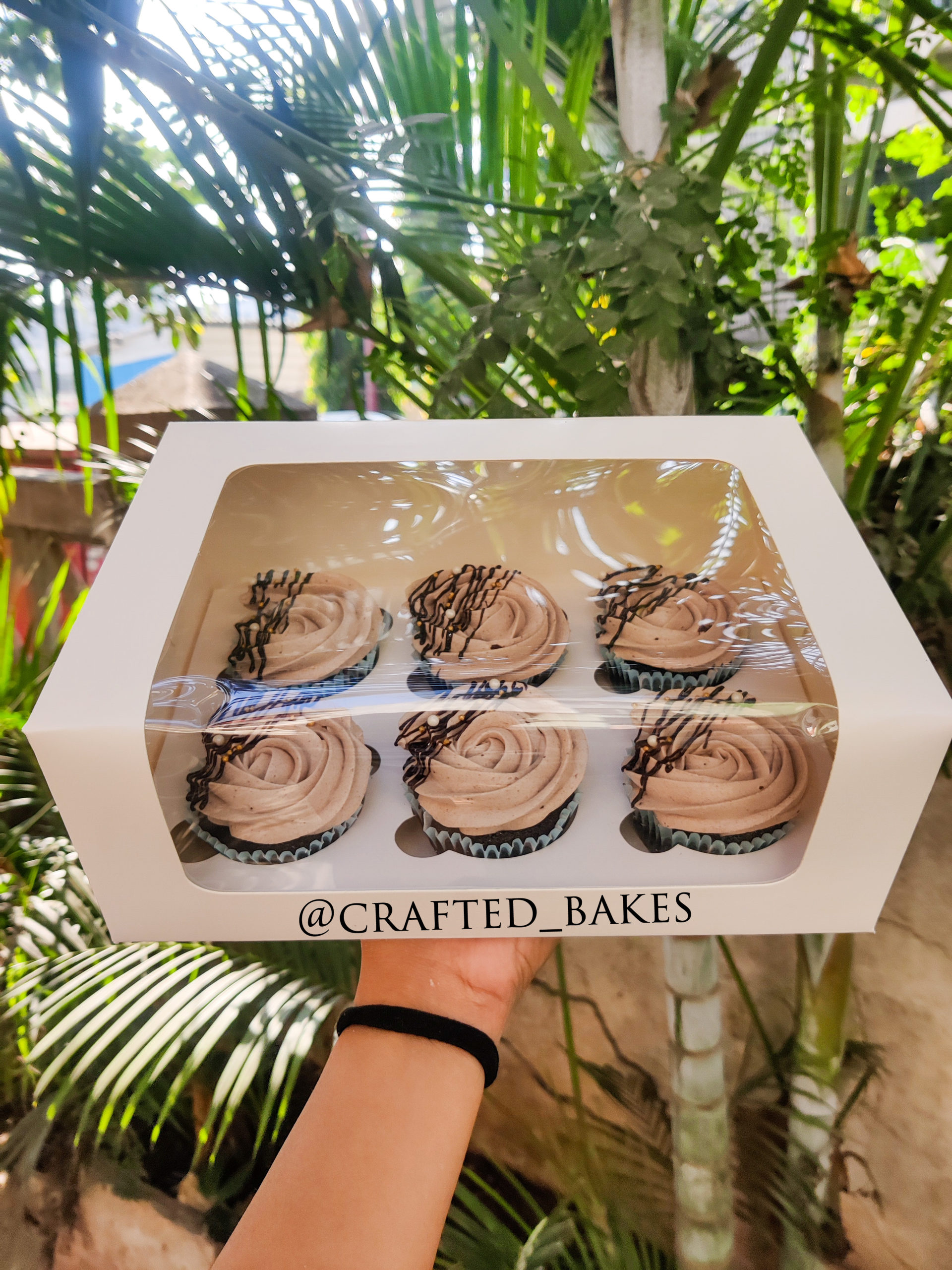 Box of 6 assorted Chocolate Cupcakes Designs, Images, Price Near Me